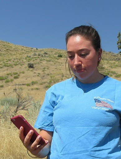 A young woman with dark hair and a blue t-shirt looks at her cell phone while standing in front of hill with tan grasses and blue skies.