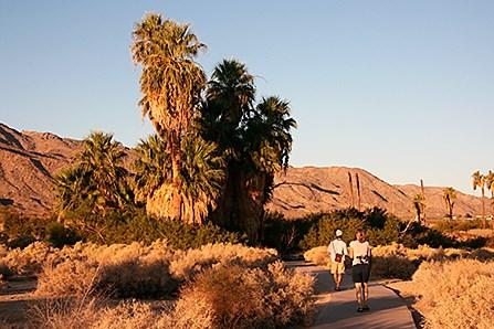 Palm Desert Auto >> Oasis of Mara - Joshua Tree National Park (U.S. National Park Service)