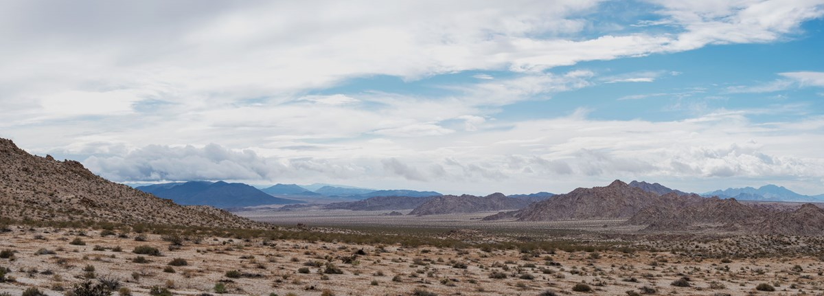 Color panoramic photo of the Coxcomb Mountains cascading into the distance with light clouds in the sky.