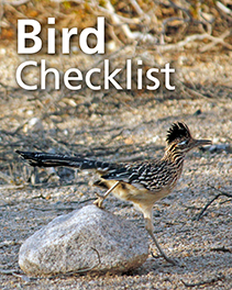 "overlay text ""Bird Checklist"" above a roadrunner stepping down from a rock"