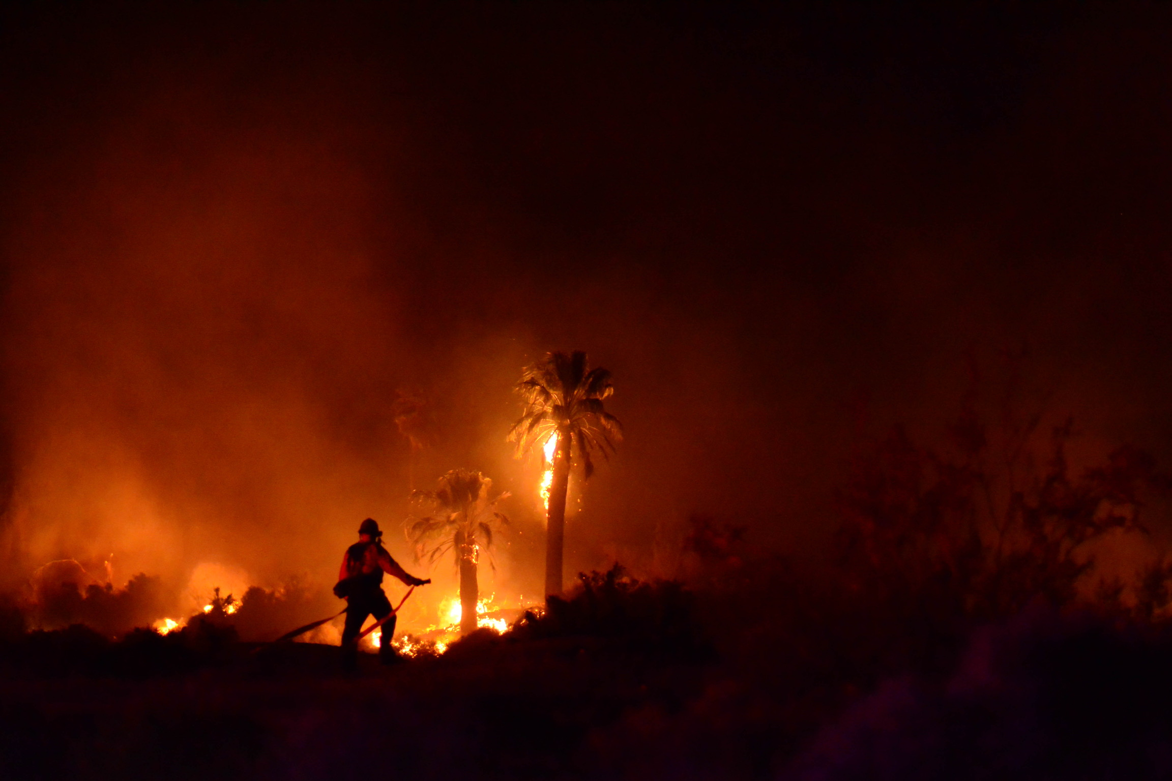 Night photo of palm trees ablaze from a fire in the Oasis of Mara. Photo credit: Steve Raines
