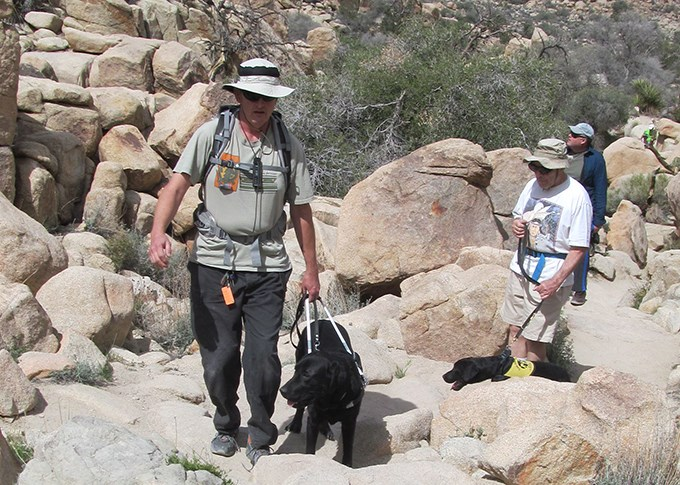 three hikers and two service animals hike among rocks on the Hidden Valley Nature Trail