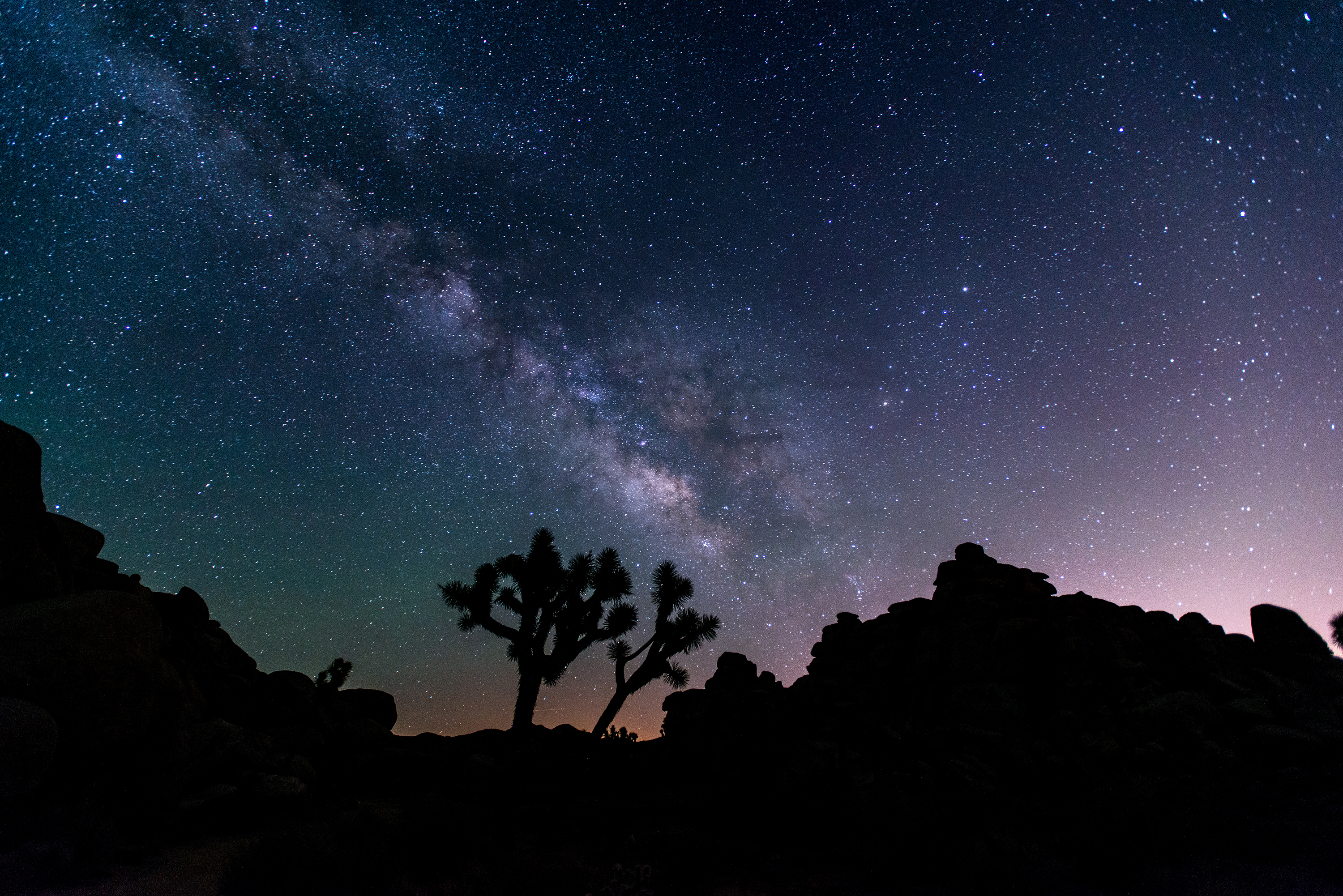 Color photo of the Joshua Tree landscape in silhouette with a brilliant night sky and Milky Way visible in the background.