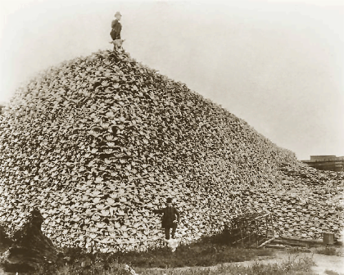 A man stands atop a mountain of skulls