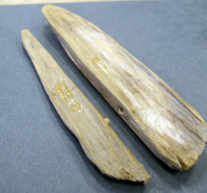 Two halves of a wooden sheath for a spear point