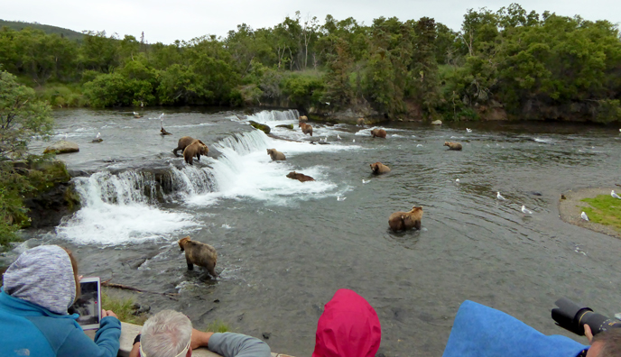 People watch bears at Brooks Falls