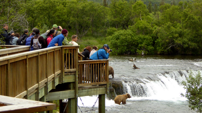 people standing at wildlife viewing platform near waterfall