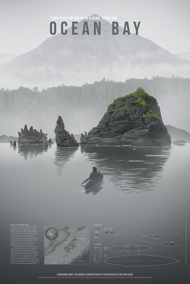 A lone traditional kayaker paddles in the fog towards a rock coast inhabited with sea lions