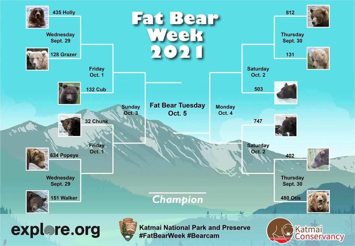 Fat Bear Week 2021 Bracket with 12 bear photos. Match 1: 435 vs. 128. Match 2: 151 vs. 634. Match 3: 812 vs. 131. Match 4: 480 vs. 402. Match 5: Winner of Match 1 vs. Winner of Fat Bear Junior. Match 6: Winner of Match 2 vs. 32. Match 7: Winner of Match 3