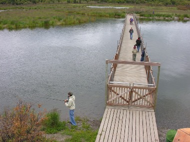 Visitors walk across the Brooks River floating bridge to access Brooks Camp and bear viewing platforms.