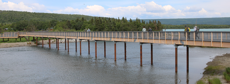 bridges broods download
