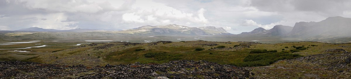 a panoramic view of subarctic tundra and majestic mountains