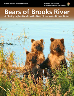 Bears of Brooks River eBook