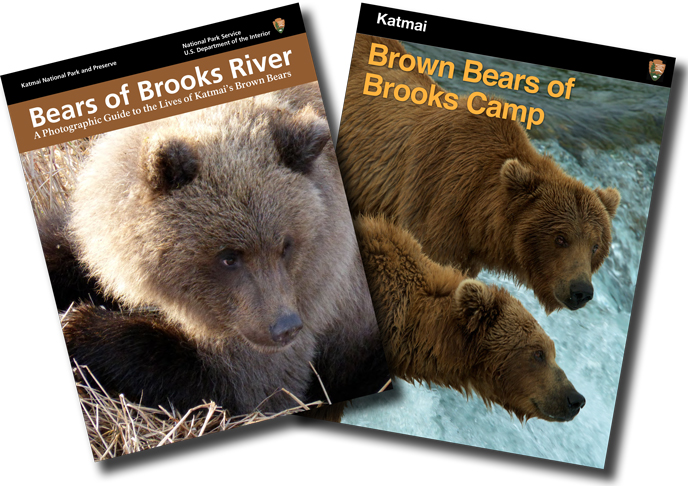 Cover pages of bear ebooks