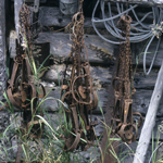 Traps hanging on the outside of a cabin