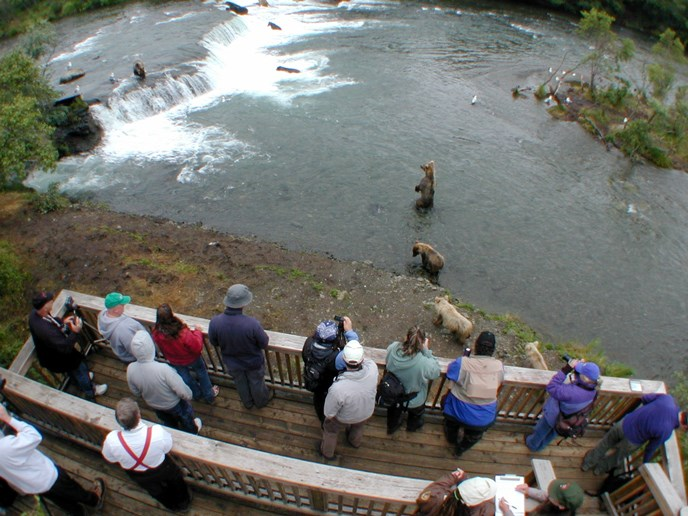 People on the wildlife viewing platform watching brown bears at Brooks Falls