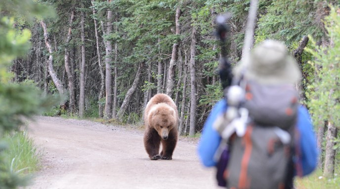Person-and-approaching-bear-(photo-copyright-Jake Bortscheller)