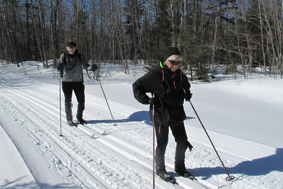 Two people cross-country skiing on a sunny wooded trail