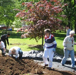 Volunteers work in the soil