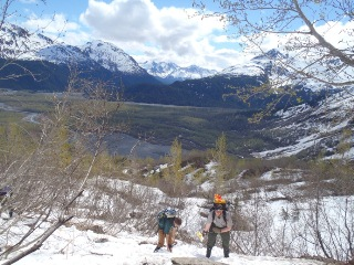 Invasive Plants Management Team (IMPT) on the Harding Icefield Trail.