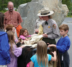 Ranger showing pets and skulls to park visitors