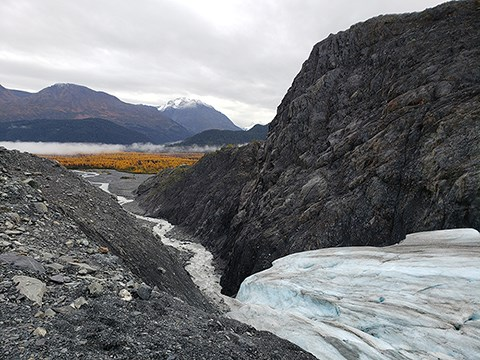 The edge of a glacier flowing between two mountains. At the bottom of the glacier a creek flows from right to left.  In the background is a forest with yellow leaves.