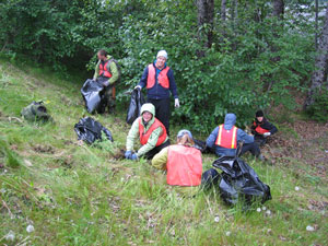 Volunteers pulling weeds along road to Exit Glacier
