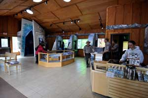 2012 Exit Glacier Nature Center exhibits