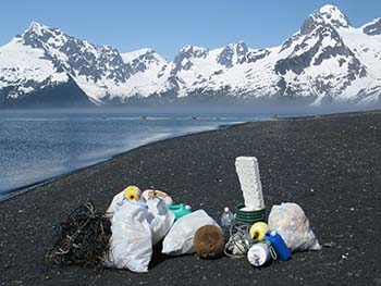 Various pieces and bags of trash collected on a beach with mountains in the background.