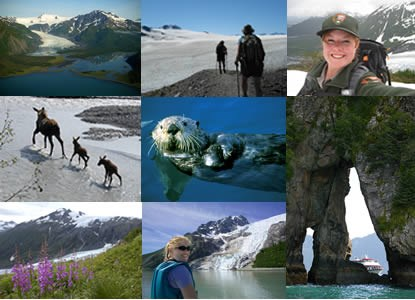 Collage of images from Kenai Fjords National Park