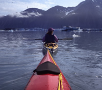 Kayakers in Bear Glacier Lagoon