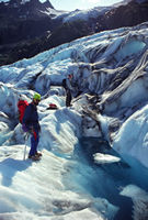 Climbers on Exit Glacier