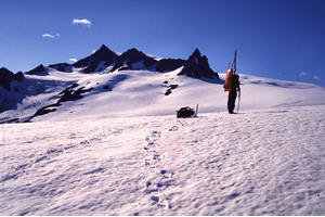 Skiing on the Harding Icefield.