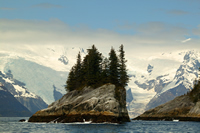 Small rocky outcrops topped by spruce trees along Kenai Fjords rugged coast