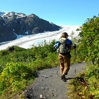 A hiker follows a trail with vegetation on each side and a glacier in the background.