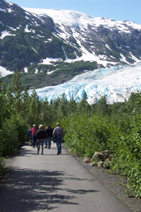 Paved Trail at Exit Glacier