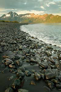 Beach at Pedersen Lagoon in Kenai Fjords National Park