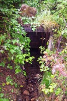 Abandoned mine shaft.