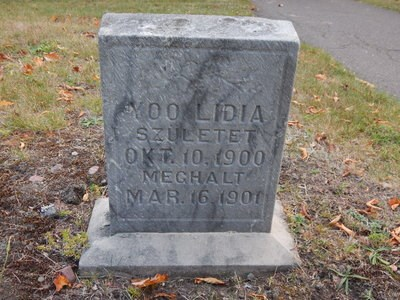 A grave marker in a cemetery.