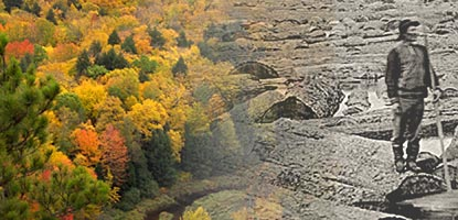 Natural processes, changing environments, and human activities have all shaped the Keweenaw Peninsula's forests.