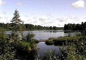 Numerous lakes enhance the scenery and recreation in the Ottawa National Forest. Click here to visit their website.