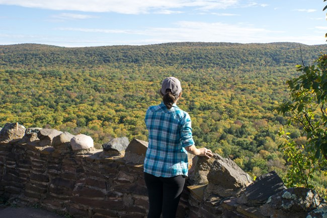 An overlook at Porcupine Mountains Wilderness State Park