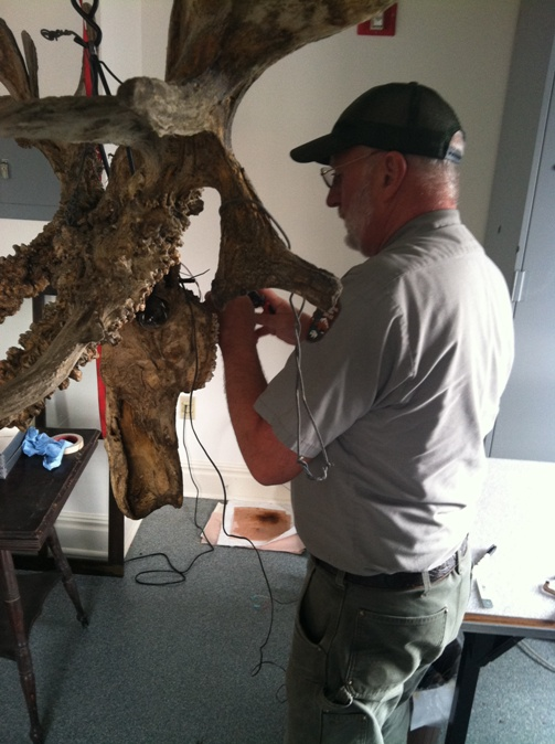 Mr. Scott Logan wires red LED lights into the deformed moose skull.