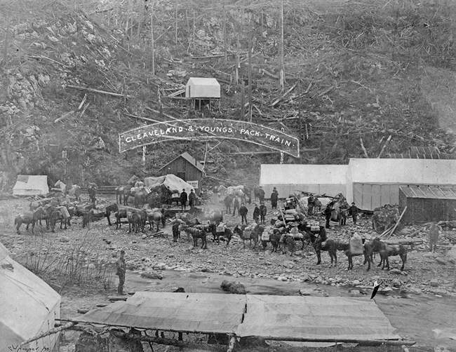 Men and pack horses wait in front of a tent city.