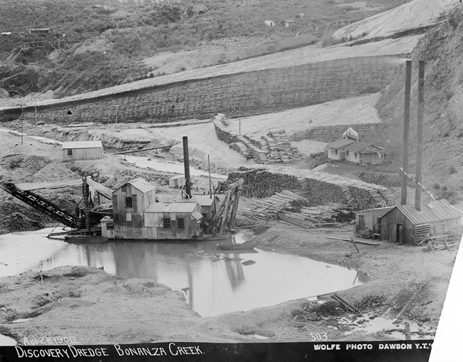 A gold dredge floats on a pond, surrounded by mine tailings and massive piles of fuel wood.