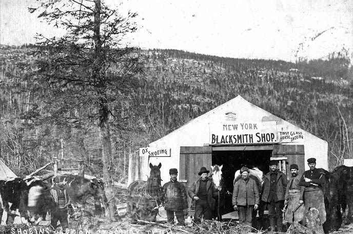 "Black and white historic photo of men and horses in front of a tent with main sign reading ""New York Blacksmith Shop."""