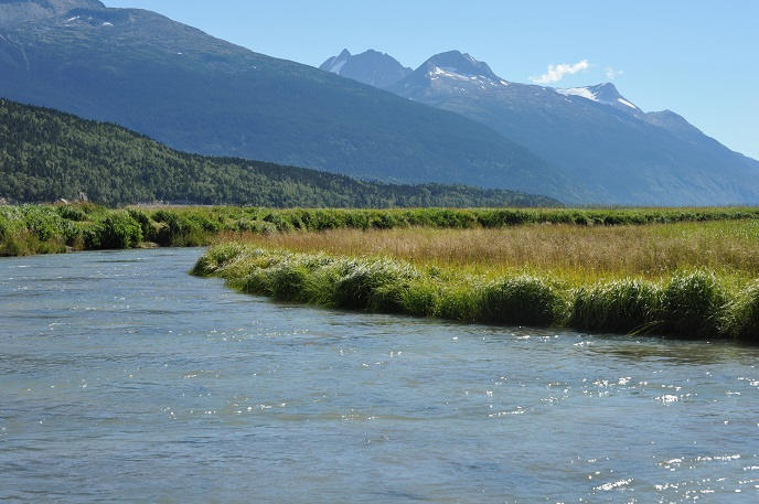 A river flowing through grasses with a mountain backdrop.