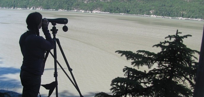 A person uses a spotting scope near water.