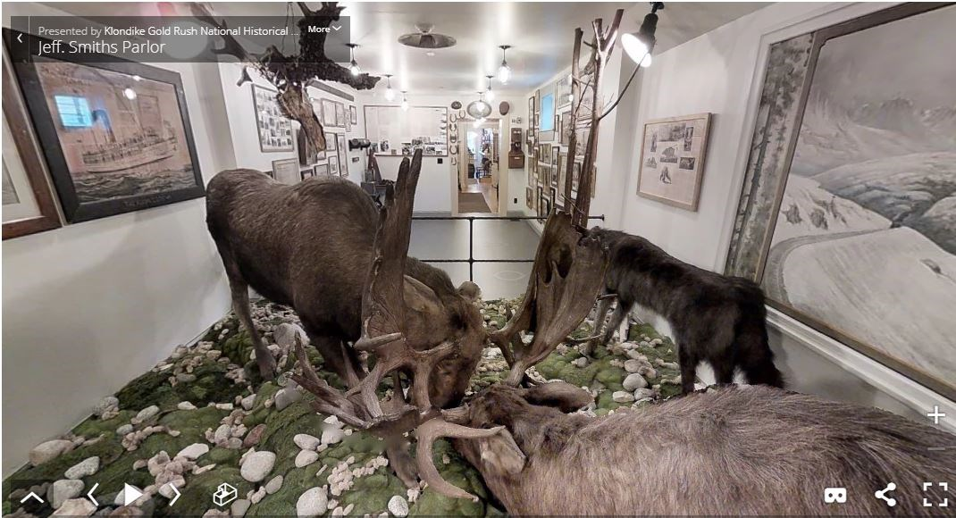 Two moose with interlocked antlers in a long, narrow building