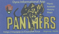 "Illustration of a panther climbing over the word ""PANTHERS"" with other main text reading ""Dyea Informational App."""
